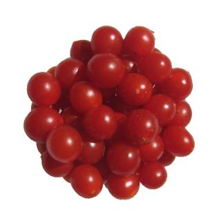 Cherry Tomaten am Zweig