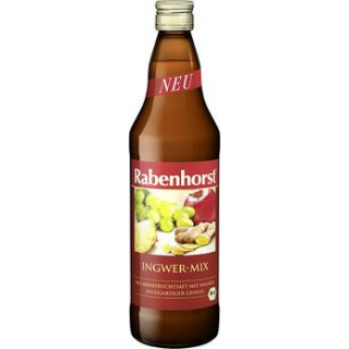 Rabenhorst Ingwer-Mix, 0,75 ltr Flasche